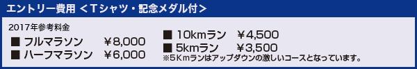 エントリー費用<Tシャツ・記念メダル付>