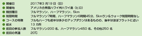 ビッグアイランドマラソン詳細データ