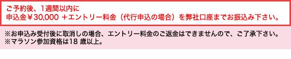 ご予約後、1週間以内に申込金30000円+エントリー料金(代行申込の場合)を弊社口座までお振込みください