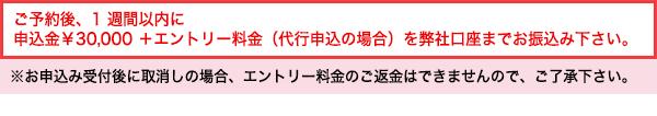 ご予約後、1週間以内に 申込金¥30,000+エントリー料金(代行申込の場合)を弊社口座までお振込み下さい。