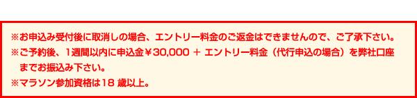 ※お申込み受付後に取消しの場合、エントリー料金のご返金はできませんので、ご了承下さい。※ご予約後、1週間以内に申込金¥30,000 + エントリー料金(代行申込の場合)を弊社口座までお振込み下さい。※マラソン参加資格は18歳以上。